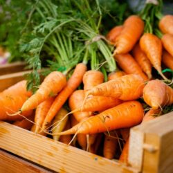 7 Reasons Why Carrots are Superfood for Men